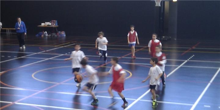 webbasket5